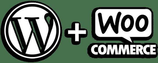 diseño tienda online wordpress valencia